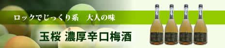 島根県 玉桜「濃厚辛口梅酒」 玉桜酒造